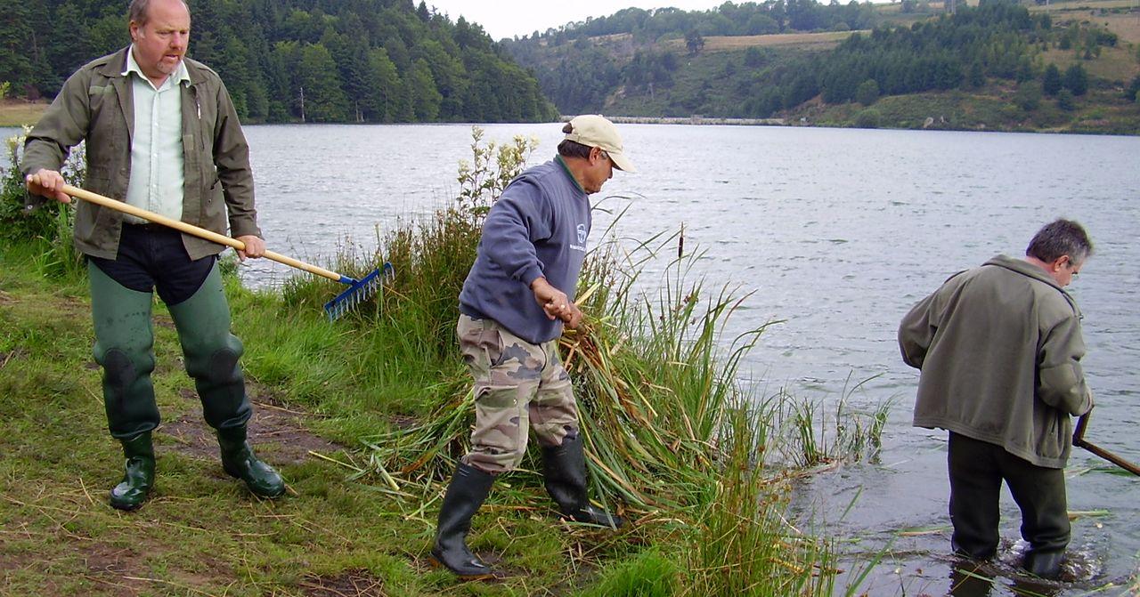 Travaux de nettoyage des berges sur le plan d'eau